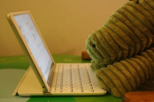 Croc typing away